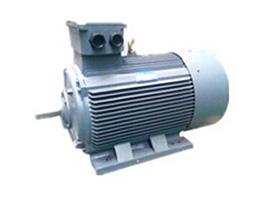 高压电动机-Y2系列紧凑型高压三相beplay官网体育机.jpg