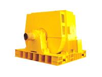 T万博定制版2500-6000kW同步电动机
